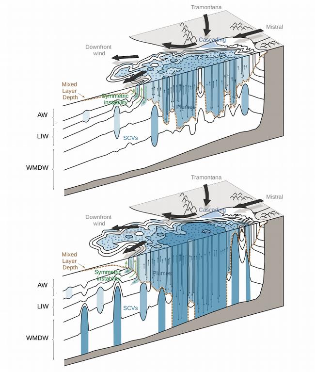 Gliders-watermassformation