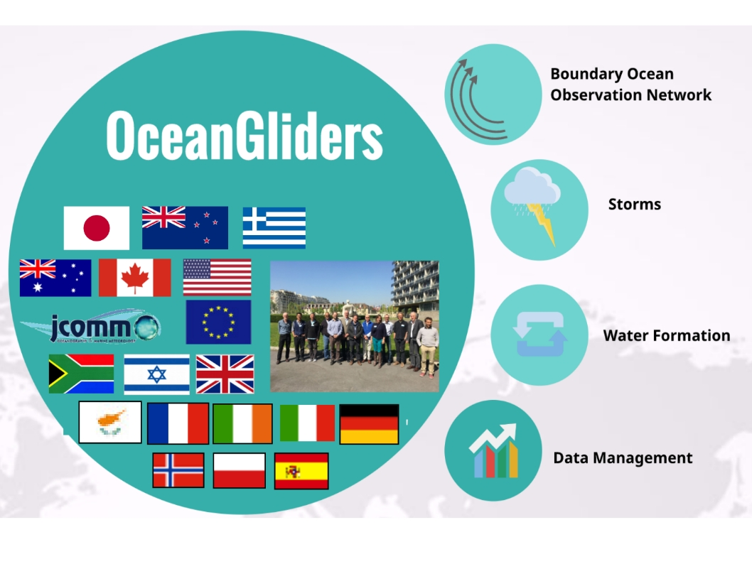 How is OceanGliders organized?